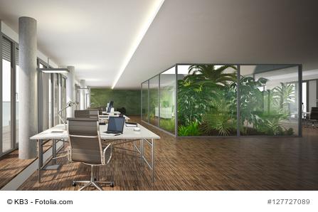 Gut gegen dicke Luft: Pflanzen in Konferenzräumen